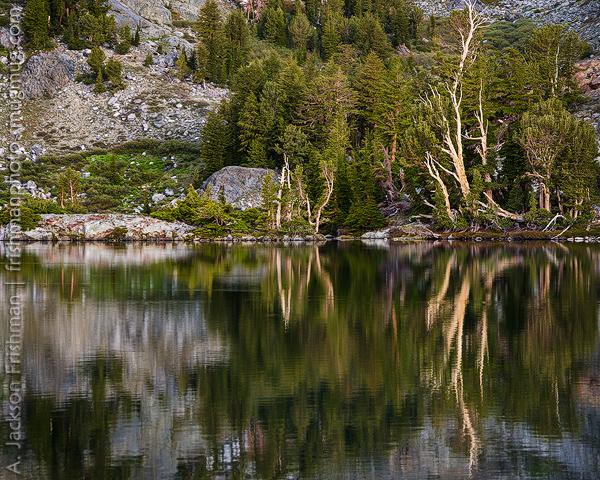 Lake Symmetry