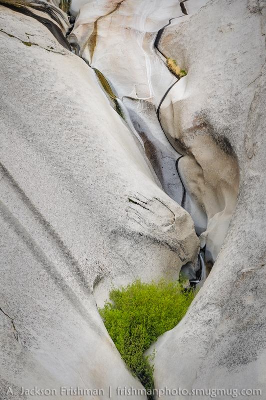 McCloud Creek Cleft
