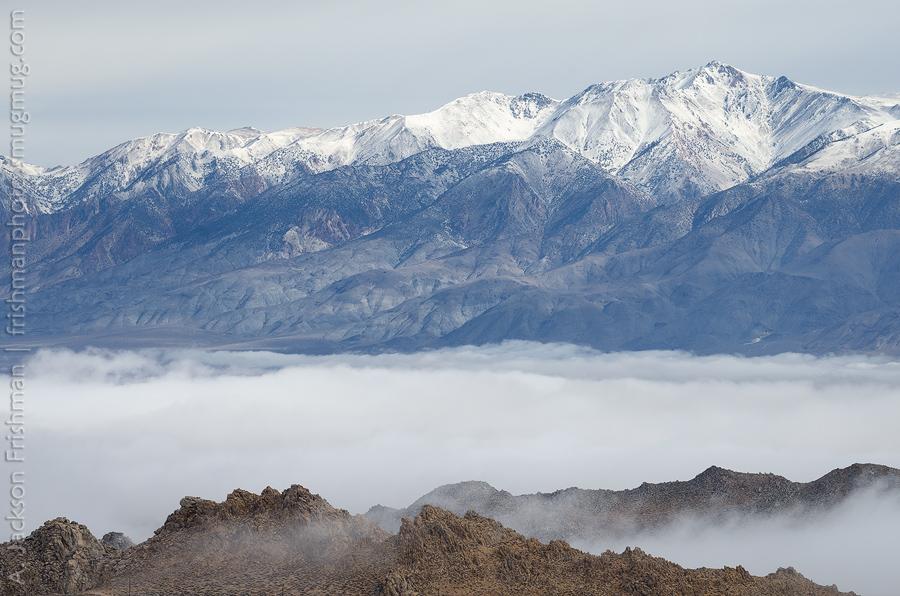 Fog under Whites