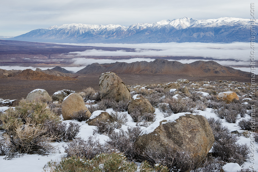 Owens Valley Fog