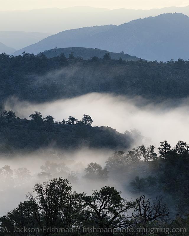 Westgard Fog Layers