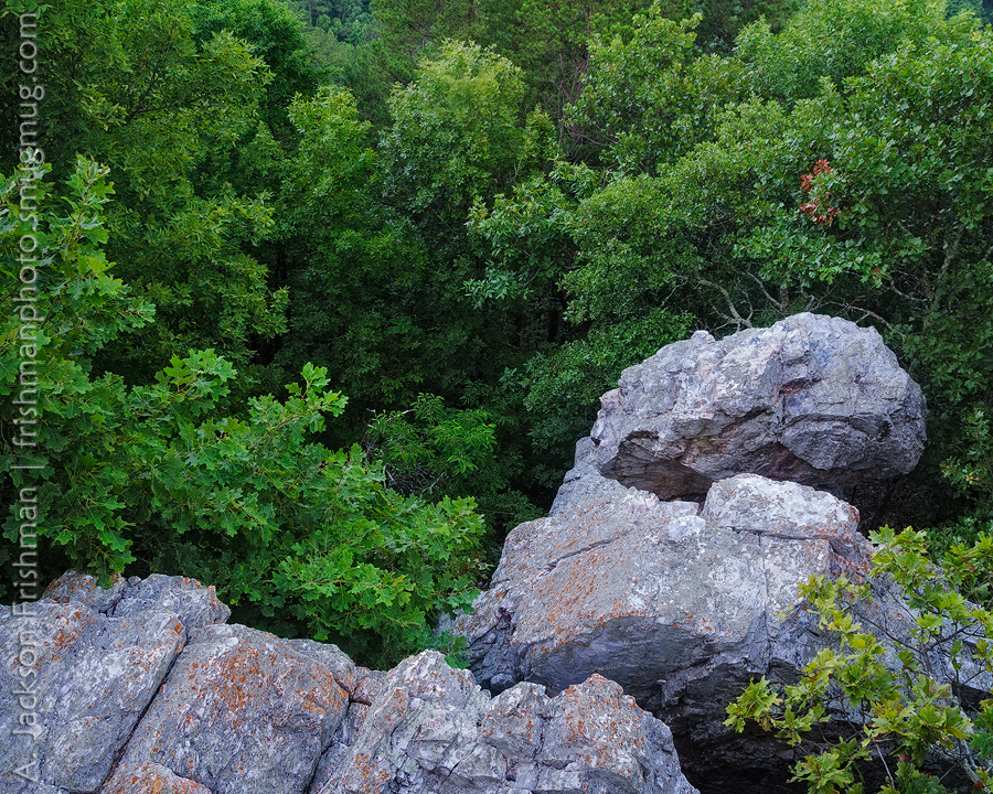 Boulders in Forest