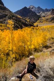 McGee Creek, Sierra autumn