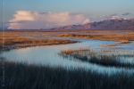 Evening at Stillwater National Wildlife Refuge, Churchill County, Nevada