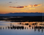 Sunset at Stillwater National Wildlife Refuge, Nevada