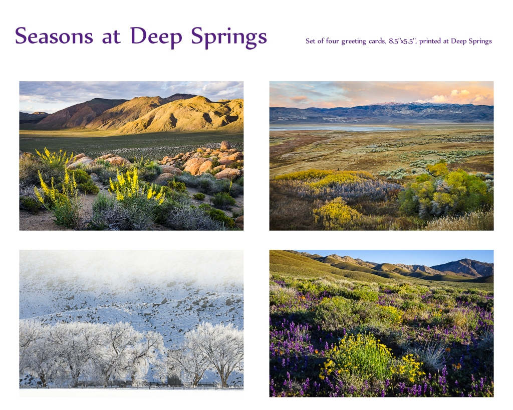 Set of four greeting cards from Deep Springs Valley, California