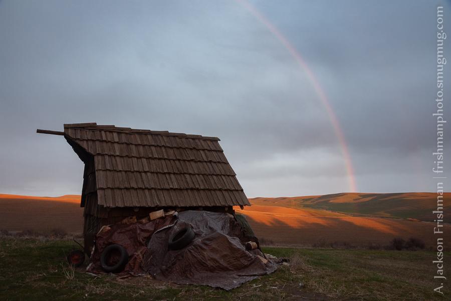 Woodshed Rainbow
