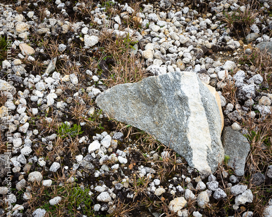 Pumice and Gneiss