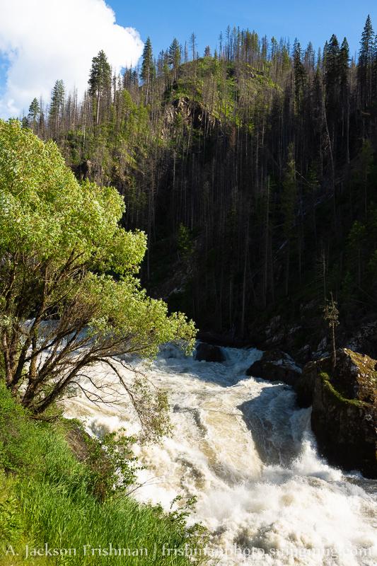 Selway Falls Bottom Drop