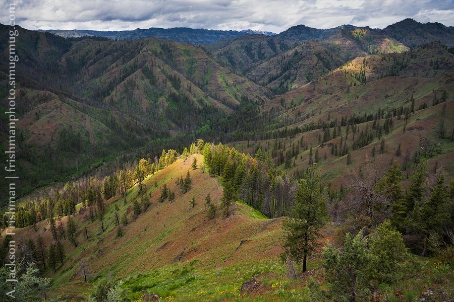 Crooked Creek Ridges