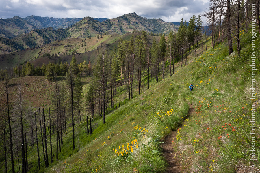 Three Forks Trail Eli